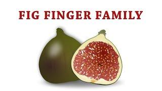 FIG Finger Family | Fruit Finger Family
