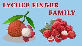 LYCHEE Finger Family | Fruit Finger Family