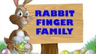 Rabbit Finger Family   Animal Finger Family