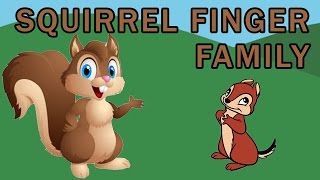 Squirrel Finger Family | Animal Finger Family