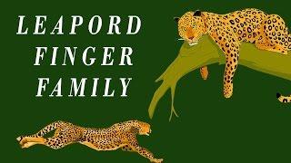 Leapord Finger Family | Animal Finger Family