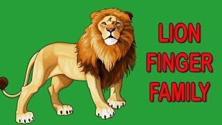 Lion Finger Family | Animal Finger Family