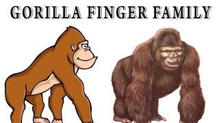 Gorialla Finger Family | Animal Finger Family