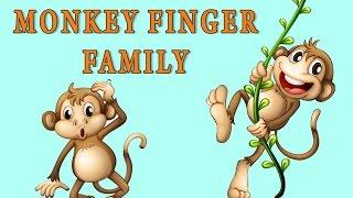 Monkey Finger Family | Animal Finger Family