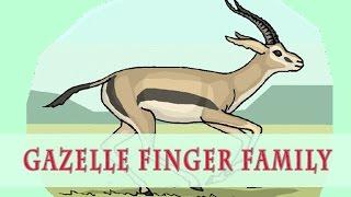 Gazelle Finger Family | Animal Finger Family