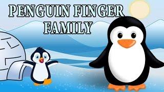 Penguin Finger Family | Animal Finger Family