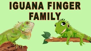 Iguana Finger Family | Animal Finger Family