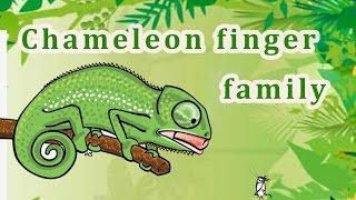 ChameleonFinger Family | Animal Finger Family