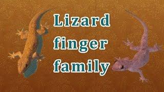 Lizard Finger Family | Animal Finger Family