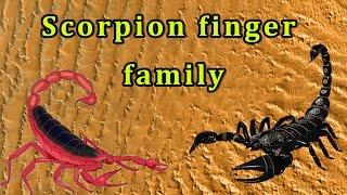 Scorpion Finger Family | Animal Finger Family