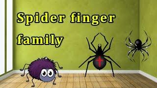 Spider Finger Family | Animal Finger Family