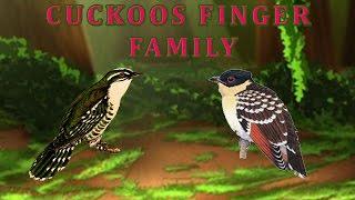 Cuckoos Finger Family | Animal Finger Family