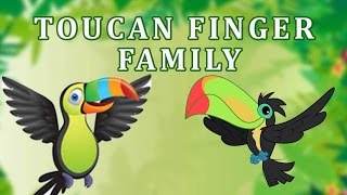 Toucan Finger Family | Animal Finger Family