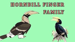 Hornbill | Animal Finger Family