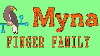 Myna | Animal Finger Family