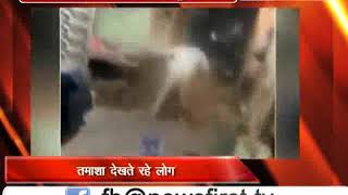 दिल्ली : युवक चाकू मारता रहा,लोग वीडियो बनाते रहे लाइव चाकूबाजी