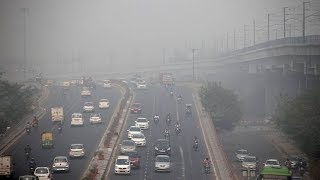 Dense fog disrupts flight operations at Delhi airport
