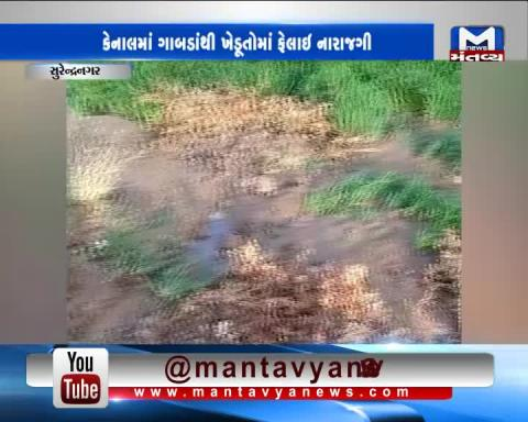 Surendranagar: Sinkhole occurred in the canal of Bhalgam