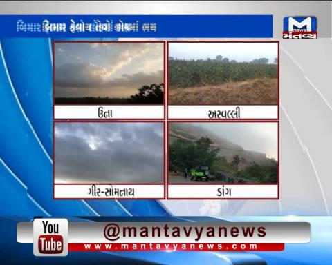 Unseasonal Rain in Una, Aravalli, Dang & Gir Somnath worries farmers