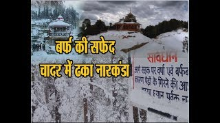 Heavy Snowfall in Narkanda  || Heavy Snowfall in Shimla Himachal today