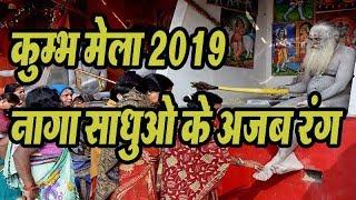 #Prayagraj Ardh Kumbh Mela, 2019 | कुम्भ मेला 2019  #NagaSadhu in #KumbhMela