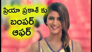Priya Prakash Get Huge Offers From Star Heroes & Tollywood | Priya Prakash Movies | Top Telugu TV