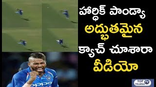 Hardik Pandya Stunning Catch To Dismiss Kane Williamson | India Vs New Zealand 3rd Match Highlights