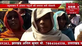 [ Kanpur ] कानपुर के असालत गंज चौराहे पर आवारा मवेशियों की वजह से परेशान महिलाओं ने लगाया जाम