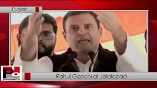 Rahul Gandhi address public rally in Jalalabad, Punjab