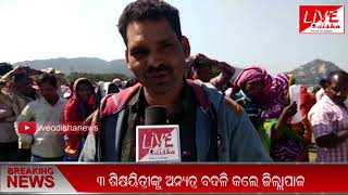 Speed News : 01 Feb 2019 || SPEED NEWS LIVE ODISHA