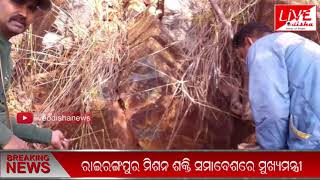 Speed News ::03 Feb 2019 || SPEED NEWS LIVE ODISHA