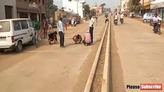 सड़क निर्माण में ठेकेदार की लापरवाही का खामियाजा भुगत रहे लोग, 6 माह से नाले में जमा गन्दा पानी