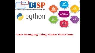 Python Pandas Data Wrangling | DataFrame to Excel | BISP Pandas | BISP Data Science | Pandas Excel