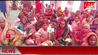 Speed News ::07 Feb 2019 || SPEED NEWS LIVE ODISHA