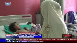 Puluhan Bayi dan Balita di Banjarmasin Terserang DBD