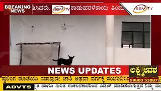 ಕಸ್ತೂರಿ ಬಾ ಗಾಂಧಿ ಬಾಲಕಿಯರ ವಸತಿ ನಿಲಯ ನೂರಾರು ಸಮಸ್ಯೆಗಳಿಂದ  SSV TV NEWS 10/02/2019