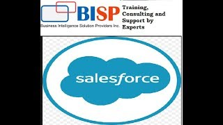 Salesforce Twitter Integration | Salesforce SSO Configuration for Twitter