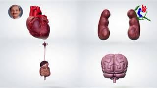 अध्याय -1, अहिंसा का सिद्धांत (रोगों से बचाव) Video Book... by Ach Shri Mohan Gupta