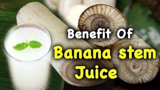 SS-6 Benefit of Banana Stem Nectar Juice. Voice of Guru of Acharya Mohan Gupta Ji.