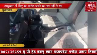 उत्तर प्रदेश के मुरादाबाद में तेंदुए के आतंक से पूरे गांव में दहशत का माहौलTHE NEWS INDIA