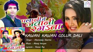 KAWAN KAWAN COLUR DALI    PALANI ME JAWANI RANGATA     Dhananjay Sharma   Holi Geet 2016