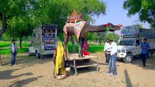 New Dj Rasiya डी जे वाला गानो लगा शादी को || Dj wala Gano laga sadi ko || Rajasthani Sekhawati