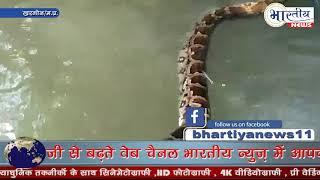 दो दिनों से फसा 8 फिट लम्बे अजगर को वन्यप्राणी टीम द्वारा रेस्क्यू कर बचाया। #bhartiyanews