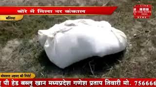 [ Ballia ] बलिया में सड़क किनारे पुलिस को एक नर कंकाल मिला  / THE NEWS INDIA