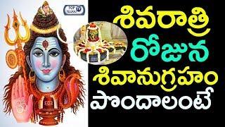 శివరాత్రి రోజున శివానుగ్రహం పొందాలంటే | Shivaratri Pooja | Method of Performing Pooja on Shivaratri