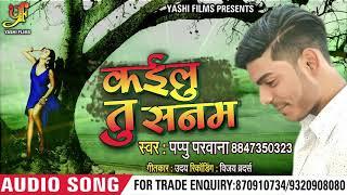 Bhojpuri Sad Song - कइलू तू सनम - Pappu Pasawan - Kailu Tu Sanam - Bhojpuri Sad Songs 2018