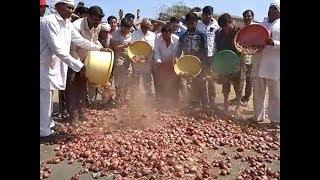Onion on road : किसान सड़क पर फैंक रहे प्याज | Farmers dump onion produce as prices fell