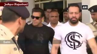Salman Khan Pronounced Guilty in Blackbuck Poaching Case