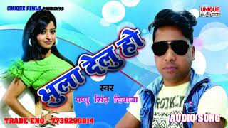 2017 Super Hit  Song ~ काहे भुला देलु हो - Pappu Singh Deewana || Super Hit Bhojpuri Song