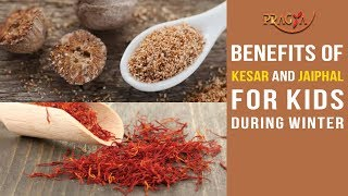 Watch Health Importance of Kesar and Jaiphal During Winter